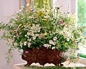 Eisenjardiniere mit Wiesenblumen: Margeriten, Galium