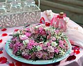 Kranz auf Moosring mit Blüten von Dianthus caesius / Nelken,