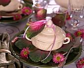 Kohlrabisuppe dekoriert mit Brassica (Zierkohlblättern), Chrysanthemum