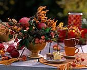 Malus / Äpfel und Zieräpfel, Hedera / Efeu, Myrtus / Myrte mit Früchten, Fagus / Rot