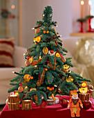 Gebundenes Weihnachtsbäumchen aus Abies procera / Nobilistanne behängt Citrus sine