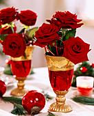 Rosa / Rose 'Grand Prix', Pinus strobus / Seidenkiefer, Gläser rot mit Gold, rote K