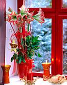 Hippeastrum-Amaryllis adventlich geschmückt am Fenster