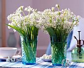 Allium ursinum / Bärlauchblüten in Gläsern