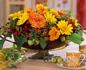 Helianthus / Sonnenblumen, Dahlia / Dahlien
