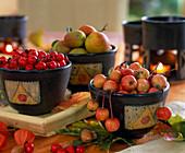 Malus / Zieräpfel, Rosa / Hagebutten