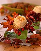 Rosa / Rose und Hagebutten, Chrysanthemum, Acer / Ahornblatt, Amelanchier / Fels