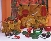 Herbstlaub als Geschenkverpackung: 3/3. Acer / Ahornblätter, Amelanchier / Felse