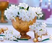 Narcissus 'Ziva' / Tazett-Narzissen in goldenem Pokal, goldene Kugeln