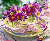 Crocus 'Tricolor' / Krokus und Primula acaulis / Frühlingsprimel