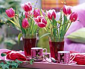 Tulipa (Tulpen), Betula (Birkenzweige)