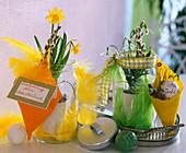 Vorratsgläser mit Narcissus (Narzissen)