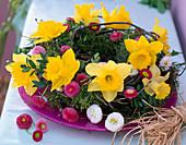 Mooskranz mit Narcissus (Narzissen)