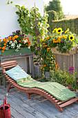Orange-gelber Balkon mit Sommerblumen und Kletterpflanzen