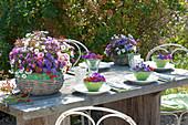 Ländliche Tischdeko mit Herbstastern