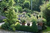 Holzterrasse im Garten am Hang, Kübel mit Rosa (Rosen) und Rosmarinus