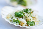 Fava bean and rice salad