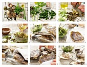 How to make oysters with a parsley salsa verde