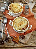 french onion soup with baked cheese on toast
