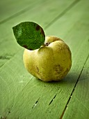 A quince with leaf