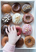 A hand selecting a donut from a box of a dozen donuts