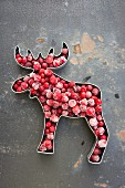 A moose-shaped cookie cutter filled with frozen lingonberries