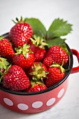 Strawberries in an enamel pot