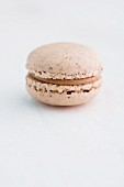 Haselnuss-Macaron