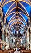 The Notre-Dame Cathedral Basilica in Ottawa, Canada