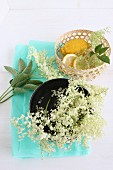 Fresh elderberry blossoms in a black bowl, with lemons in a basket on turquoise silk paper