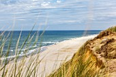 A view of the beach and dunes on the island of Sylt, Germany
