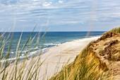 Blick auf Strand und Dünen, Sylt, Deutschland