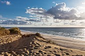 Cloudy skies, beach and sand dunes on the island of Sylt in Germany