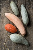 Several banana squash on a rustic wooden background