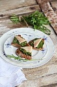 Toasted bread topped with herb and walnut pesto and trout fillets