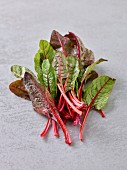 Red stemmed baby chard