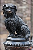 A monument for Greyfriars Bobby (a Skye Terrier) in Edinburgh, Scotland