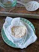 Homemade vegan soya cream cheese