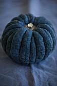 A Hayato pumpkin