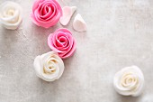 Pink and white marzipan roses