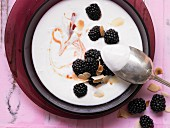 Iced kefir soup with rose hips and blackberries