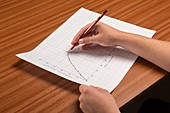 Drawing a curved line graph