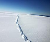 Pine Island Glacier rift, Antarctica, 2016