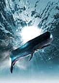 Marine creature underwater, illustration