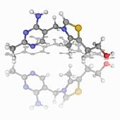 Vitamin B1 (thiamine) organic compound molecule