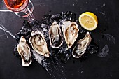Opened Oysters on dark marble background with ice, lemon and rose wine
