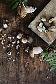 Fresh porcini mushrooms with a knife on a wooden background