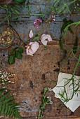 Verschiedene Blumen und Blätter auf einer abgenutzten Tischplatte