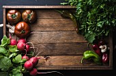 Fresh raw vegetable ingredients for healthy cooking or salad making on rustic wooden background