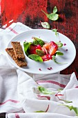 White ceramic plate with salmon filet, salted with beetroot juice, served with whole wheat toasts